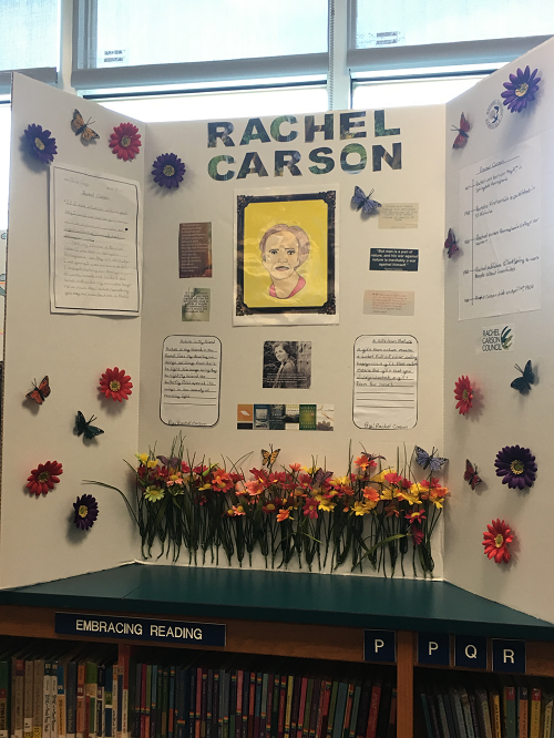 rachel carson  school projects