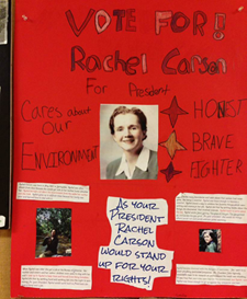 rachel carson essay contest maine Rachel carson, a marine biologist rachel carson essay rachel carson, a marine biologist and science writer, is best known for her last book maine, where she.