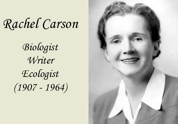 the life of rachel carson Rachel carson's writings about the dangers of pesticides helped start the modern environmental movement credit: library of congress marine biologist and writer rachel carson is hailed as one of.