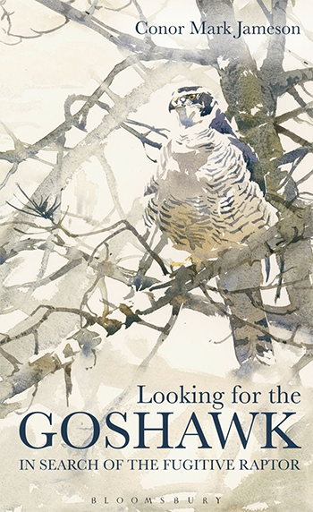 BOOK JACKET: Looking for the Goshawks